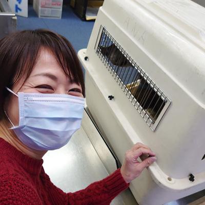 動物が好きです。保健所保護犬、福太郎は里親様の待つ伊丹空港へ旅立ちました。